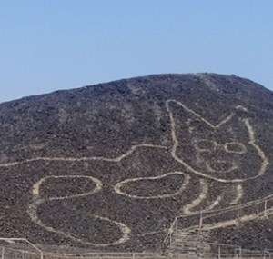 Nazca Lines: New Giant Geoglyph of Feline Discovered in Peru