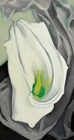 An Iconic Flower Painting by George O'Keeffe: WHITE CALLA LILY