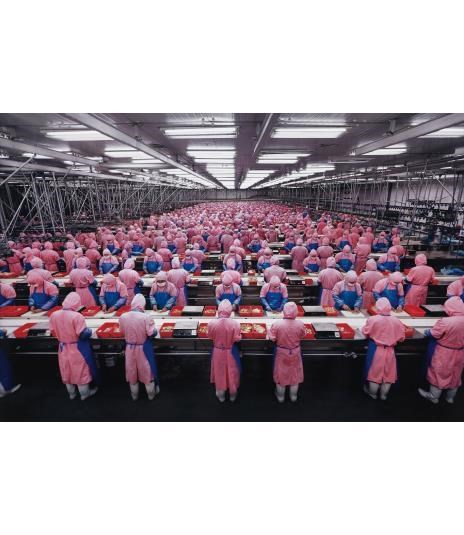 EDWARD BURTYNSKY Manufacturing #17, Deda Chicken Processing Plant, Dehui City, Jilin Province, China, 2005