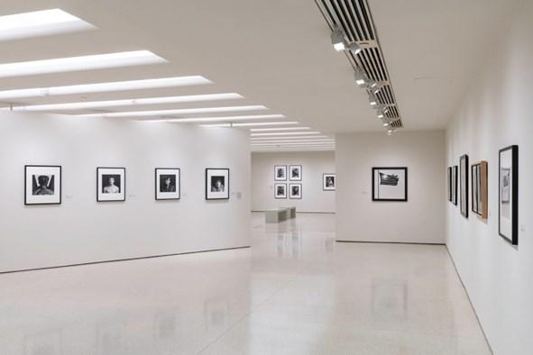 ArtDependence | Guggenheim Museum Receives Gift from the Robert