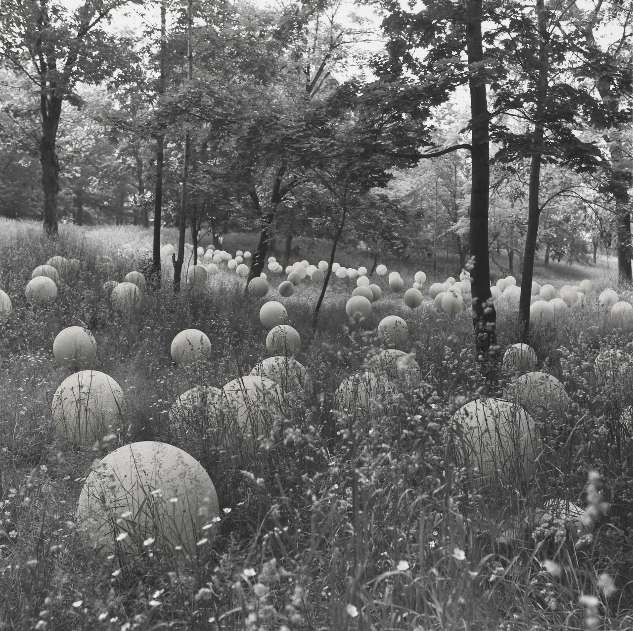 Linda Brooks - Fantasy Volumes and Landscapes, after Form III, 1976. Albright-Knox Art Gallery - © Linda Brooks.